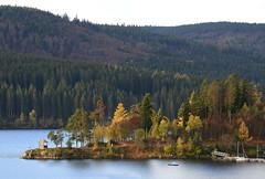 Schluchsee, Black Forest, Germany (JohannesMayr) Tags: schwarzwald schluchsee hochschwarzwald herbst see wald wasser bäume tree lake black forest germany deutschland autum