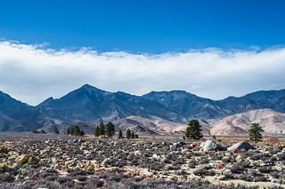 Seven Pines, Inyo County, California