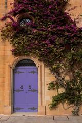 Maltese door (Siuloon) Tags: door malta mdina architektura architecture architettura drzwi