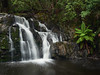 Lilydale Falls Tasmania (Lesmacphotos) Tags: boat tasmania waterfall holiday river fern
