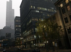 Buildings (Brandon ProjectZ) Tags: watchdogs chicago rain windy overcast buildings fall sky natural lighting trees roads fog