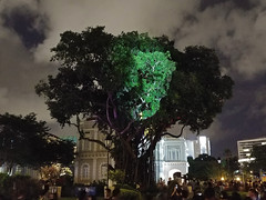 The Tree that Blinked (WY Lim) Tags: singapore nationalmuseum light festival 2017 limwy lg g6