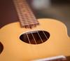 Opio1 (Tim McGovern) Tags: ukulele koaloha uke
