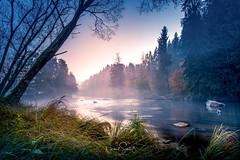"""Mystic nature ... river Ilz after sunset, Bavarian Forrest (nigel_xf) Tags: gutfeuerschwendt """"bavarian forest"""" """"bayrischer wald"""" niederbayern sunset sonnenuntergang mist fog nebel sun sonne abendsonne deutschland germany bayern bavaria """"ferien mit hund"""" """"holiday with dog"""" nikon d750 nigel nigelxf vsfototeam forest wald bäume trees tannen herbst autumn herbstfarben """"autumn colors"""" landschaft landscape berge hügel hills mountains ilz flus river mystic natur nature neukirchenvormwald"""