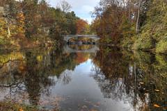 Autumn Bridge (Sunset Dogs) Tags: