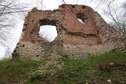 Ruiny zamku w Bochotnicy od południa