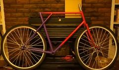 Half-painted (Tysasi) Tags: feelinglucky bespokefopchariottm painting randonneuse randonneur bike 700c framebuilding