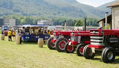 Parata di Massey Ferguson (samestorici) Tags: trattoredepoca oldtimertraktor tractorfarmvintage tracteurantique trattoristorici oldtractor veicolostorico