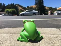 Frogger's Journey (ridureyu1) Tags: frogger classicgame funko pop funkopop bobblehead mysterymini toy toys actionfigure toyphotography sonycybershotsonycybershotdscw690