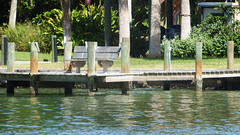 Sit and Relax By the Water (soniaadammurray - Off) Tags: iphone bench benchmonday land grass water sea dock trees bushes house flowers shadows reflections nature