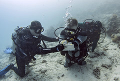 quadruple amputee man takes diving course 17 (KnyazevDA) Tags: disability disabled diver diving deptherapy undersea padi underwater owd redsea buddy handicapped aowd egypt sea wheelchair travel amputee paraplegia paraplegic