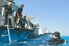 1104_15a (KnyazevDA) Tags: disability disabled diver diving deptherapy undersea padi underwater owd redsea buddy handicapped aowd egypt sea wheelchair travel amputee paraplegia paraplegic