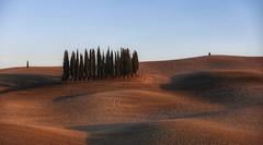 Terra di Siena (Luc1659) Tags: siena toscana italy landscape ombre luce azzurro terra alberi simplicity