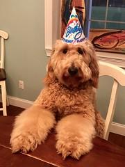 Kizzie's Arlo 1st Birthday party!!