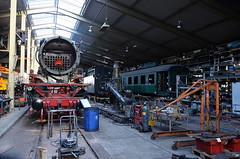 17.11.2017 (VII, slot); Locje ophalen (chriswesterduin) Tags: rrf class66 railfeeding ssn trein train locomotief locomotive