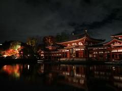 Byodoin Pheonix Hall (yukky89_yamashita) Tags: 世界遺産 平等院 鳳凰堂 京都 宇治市 kyoto uji japan night autumn worldheritage unesco