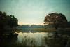 Sisley's autumn (N.sino) Tags: m9 ultron35mmf17 sisley impressionism シスレー 印象派 昭和記念公園 池