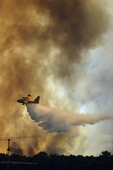 Forest fires in Portugal: EU Civil Protection Mechanism in action (EU Civil Protection and Humanitarian Aid) Tags: civilprotectionmechanism civilprotection naturaldisaster eucpm emergencyresponse emergency disasterresponse waterbomber aricraft canadair forestfire fires europe portugal