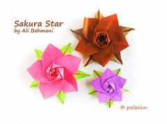 P71124-160458m (polelena24) Tags: origami star sakura
