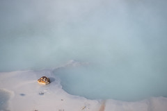 Hot Spring (blacktea3) Tags: iceland island landmannalaugar landscape landschaft mountains berge lake see