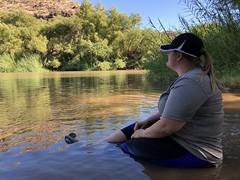 Verde River Sheep Bridge (Ant_Man1120) Tags: river lake verde arizona iphone iphone8 plus