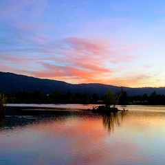 Sunset (earthdog) Tags: 2017 losgatoscreektrail lgenexus5x lg nexus 5x androidapp moblog cameraphone instagram lge sunset sky water cloud squareformat lake