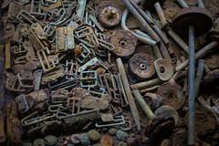 Remains of the First World War (zilverbat.) Tags: zilverbat freestyle bokeh bild belgium belgie image ieper remains world ngc worldwar1 iron buttons koppel memories rusty war