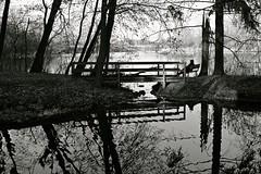 Bridge Reflection (Bo Dudas) Tags: bridge reflection water trees branches bw blackwhite black blackandwhite mono autumn fall nature outdoors outside perspective balance solo figure silhouette shadow ripples bench meditation