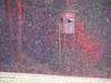 AM WALDRAND PC101030 (hans 1960) Tags: snow schnee schneefall winter december stamm trees wiese hochstand jäger hunter farben weis white forest bäume colours laub leave tannenbaum fenster window äste