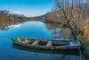 La Barque de ST Helene - Savoie (gerardcarron) Tags: canon canon80d lac nature paysage savoie automne