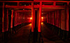 Kyoto Red (Stuck in Customs) Tags: japan kyoto 80stays rcmemories gates red walk path treyratcliff hdr hdrtutorial hdrphotography hdrphoto stuckincustoms stuckincustomscom aurorahdr x1d hasselblad