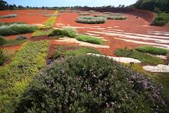 Cranbourne RBG Spring-  Nov 2017 002 (Graeme Butler) Tags: water landscape history gardens australianplants architecture victoria australia