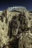 DSC_0011a-EditFAA (john.cote58) Tags: rocky top cliff mountain side rockclimb outdoors outside newfoundland stjohns ir infrared trees steep bluesky josephyvoncote photography fineart creative interiordesign nature