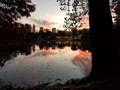 Piedmont Park, Atlanta Georgia - 24 (Laura Grace) Tags: 2017 atl atlanta autumn fall ga georgia lakeclarameer midtown november park piedmontpark solowalkshikes walksandhikes