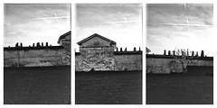 Disposal (Italian Film Photography) Tags: cemetery building sky trails chemtrails composite film analogue pellicola blackandwhite lomography belair x612 120 mediumformat medioformato biancoenero analogica scomposizione