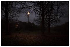 EVENING WALK (1) (der zweite blick!) Tags: andreasjurgenowski cologne derzweiteblick der2teblick deutschland germany köln kölnnippes nordrheinwestfalen northrhinewestfalia nrw abendspaziergang eveningwalk nippesertälchen abend evening dunkel dark park herbst autumn