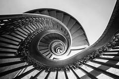 spiral (eb78) Tags: ca california bw blackandwhite monochrome greyscale grayscale sf sanfrancisco financialdistrict mechanicsinstitutelibrary stairwell explore