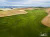 Palouse-DJI_0013-2-Edit-2 (neech_2000) Tags: farming pacificnorthwest washington drone palouse
