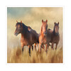 Playing with horses. (BirgittaSjostedt) Tags: creation animal horse texture paint art magicunicornverybest ie grass sky field birgittasjostedt
