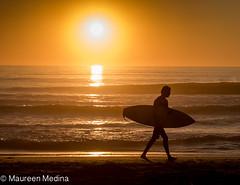 Sundown Surf (Maureen Medina ArtiZenImages Photography) Tags: california ca sandiego northern coast ocean pacific beach shore water waves sunset surfer sundown sun setting orange silhouette surfboard man maureenmedina artizenimages
