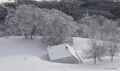 Nevada en otoño (Jabi Artaraz) Tags: jabiartaraz jartaraz zb euskoflickr nevada otoño invierno winter frío nieve elurra gorbeia refugio aterpetxea natura