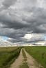 Future (Lena Bo) Tags: nature landscape mood rainy clouds future path unexpected wolken weg