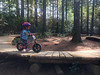 1149 (StriderBikes) Tags: 106 12 2017 backpack determined focus girl helmet numberplate obstacles october orange photocontestentry sport striding trees woods