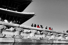 """The truth is that you will die anyway and that a lot of people who aren't even looking at their feet are going to do a whole lot better than you, and have a lot more fun while they're doing it."" ―Anne Lamott 🏰 (anokarina) Tags: classic architecture historic design gyeongbokgungpalace 경복궁 sajikro 사직로 jongnogu 종로구 seoul 서울 서울특별시 大韓民國 southkorea sk 대한민국 canonpowershotsd3500is 효자동 gyeongbokpalace railing balustrade promenade colorsplash red grey grayscale bw blackwhite walkway stone roof castle"