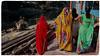 (ben oït) Tags: saris calcutta kolkata bengal india bengale inde kalighat