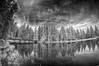 ...UP$1D3D0WN... (7H3M4R713N) Tags: fujifilm xt1 infrared convertedcamera fisheye switzerland gruère étang water 720nm ir mirrorless imfuji fujiolic sky blackandwhite bw oldschool best skyporn reflection mirror pine pins sapin dark bridge wood trees tree arbres arbre 8mm rokinon8mmf28 samyang8mmf28 wideangle manualfocus manuallens