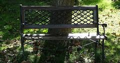 """Die Bank. Die Bänke. Die Sitzbank. Die Sitzbänke. Diese Sitzbank ist angekettet, damit sie nicht gestohlen wird. • <a style=""""font-size:0.8em;"""" href=""""http://www.flickr.com/photos/42554185@N00/37843582275/"""" target=""""_blank"""">View on Flickr</a>"""