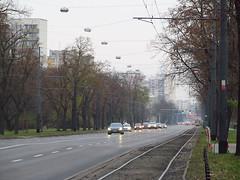 Tram line in Warsaw (transport131) Tags: infrastruktura infrastructure warszawa warsaw aleja waszyngtona washington avenue