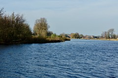 DSC05988 (hofsteej) Tags: middendelfland holland zuidholland netherlands vlaardingervaart vlaardingsekade broekpolder
