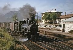 JŽ class 83 0-8-2 at Hum (TrainsandTravel) Tags: yugoslavia yougoslavie jugoslawien jugoslavija bosnia bosnie bosnien bosna herzogovina steamtrains dampfzüge trainsàvapeur parnivozovi jugoslovenskeželeznice jž narrowgauge schmalspurbahn voieetroite uskotracnihzeljeznica 760mm hum class83 082